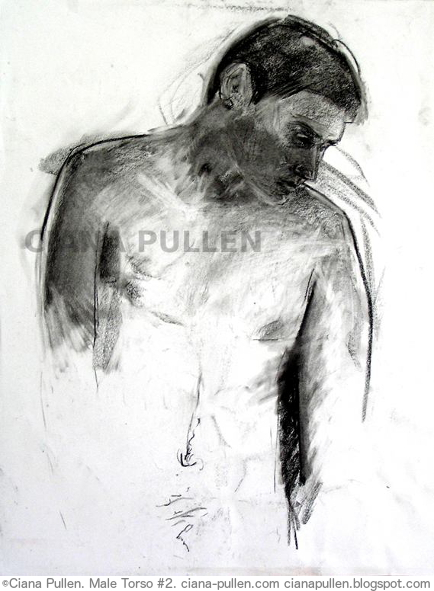 Male Torso 2, Drawing from 2010 by Ciana Pullen; Dimensions: 18 inches × 24 inches × 0 inch; Materials: Charcoal on Paper; Description:  © Ciana Pullen 2010